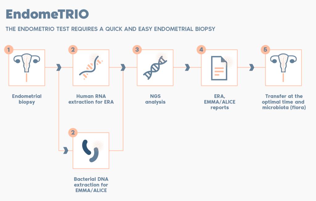 EndomeTRIO